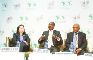 Private sector critical for lighting up Africa, says Ncube