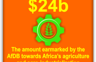 Agricultural transformation tops AfDB's agenda