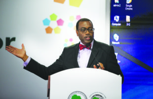 AfDB's target is to raise African billionaires from agriculture – Adesina