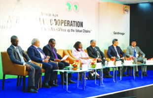 'Human capital development key to Africa-India cooperation'
