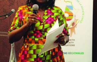 Les OSC africaine et indienne partagent les expériences sur  la « Révolution verte de l'Inde»  — Zéneb Touré