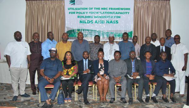 NNRC Framework as a Tool for Effective Resource Management